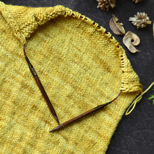 KnitPro Ginger Circular Needles